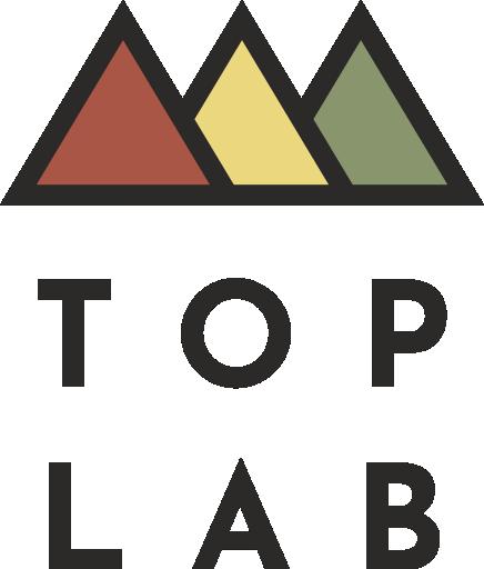 TOPLAB – комплексное управление интернет-проектами
